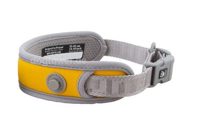 Adventure Sport Hundehalsband in orange