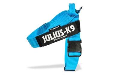 IDC Gurtband Hundegeschirr, blau