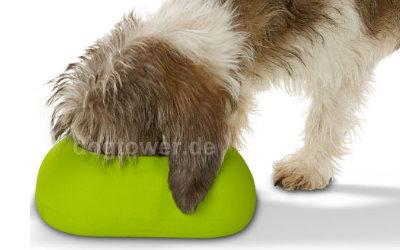 Ideal für Hunde mit langen Ohren