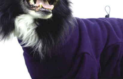 iqo Thermo-Fleece Hundeoverall, violett
