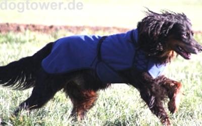 IQO VXf Softshell Hundemantel dunkelblau