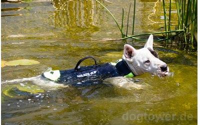 Hundeweste auch für bullige Hunderassen geeignet