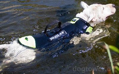 Sichere Unterstützung bei Wasseraktivitäten