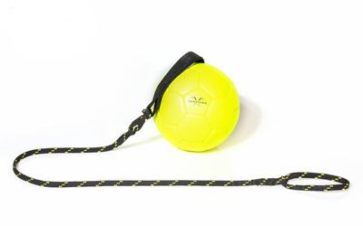 Julius K9 Schautraining Ball gelb