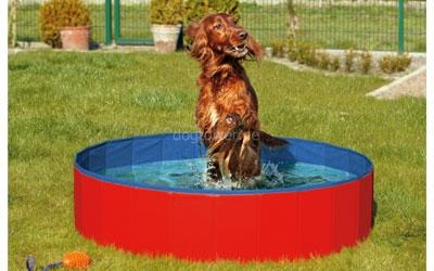 passender Doggy-Pool, rot-blau