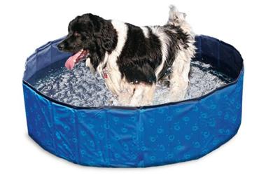 Karlie Doggy Pool, blau/schwarz