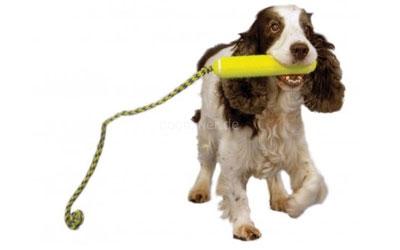 Fetch Stick
