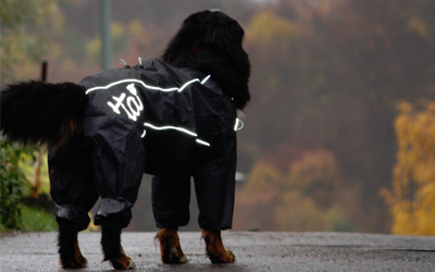 Outdoor- Hundeoverall Hurtta Pro, schwarz