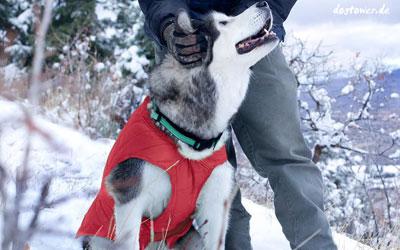 Warmer Schutz für kalte Wintertage