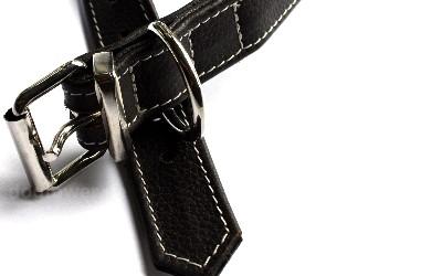 Halsband für Hunde, 37cm-65cm