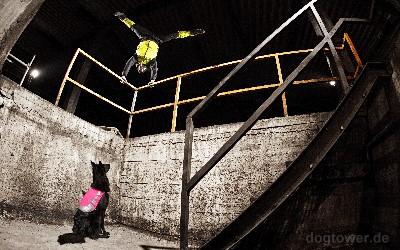 Hurtta Lifeguard Hundeweste