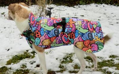 iqo Hundemantel Wintertraum (inkl. Wattierung und Innenfleece), Kleines Monster