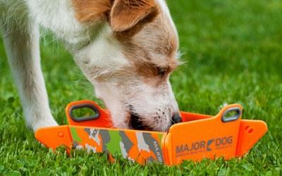 Faltbarer Hundenapf
