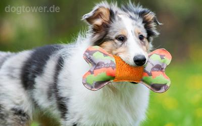 Für Welpen geeignetes Hundespielzeug