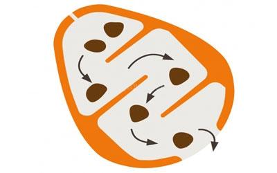 Aufbau Snack-Ei