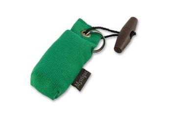 Mystique Mini Dummy Key Case, grün