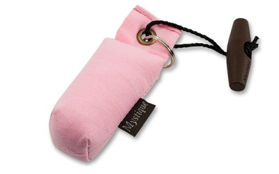 Mystique Mini Dummy Key Case, pink