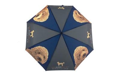 Naked Decor Labradoodle Regenschirm