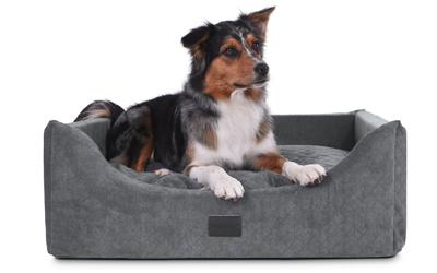 Mit abgesenktem Eingang - ideal für kranke und alte Hunde