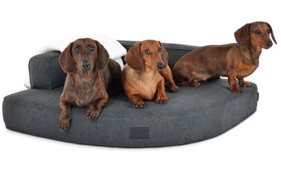 padsforall Hundebett Esquina Select+ Luxuryline, anthrazit