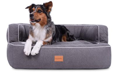 padsforall Hundebett Neo Luxuryline, grau