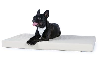 padsforall Hundematte Nuvola aus Kunstleder gesteppt, creme