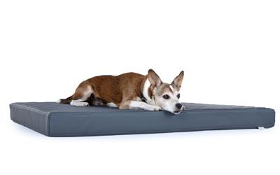 padsforall Hundematte Nuvola aus Kunstleder gesteppt, grau