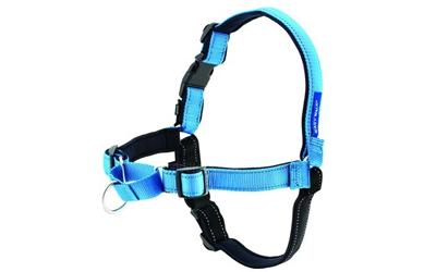Petsafe Easy Walk Deluxe Hundegeschirr und Leine, türkis blau