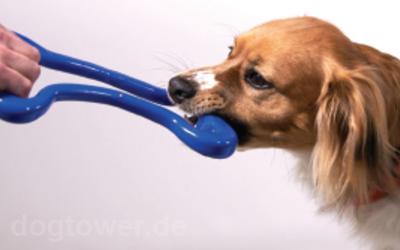 Fantastisches Zerrspielzeug von Planet Dog