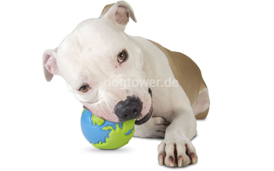 Stabiler Hundeball in Planet-Optik