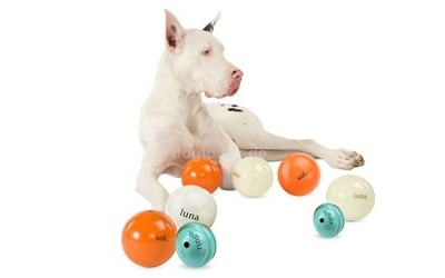 Hundebälle Cosmos- Gruppe