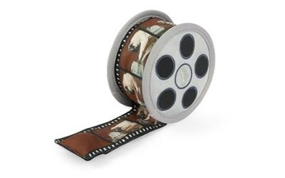 P.L.A.Y. Hollywoof Cinema Momo's Movie Reel