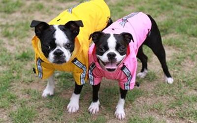 Regenbekleidung für Wind und Regenwetter