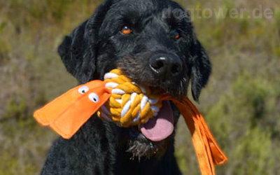 Rogz Cowboy für große Hunde in 7,8cm