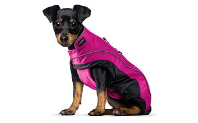 100% Bewegungsfreiheit für kleine und große Hunde