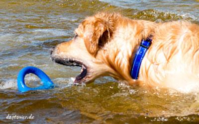 Schwimmt weit oben auf dem Wasser - prima greifbar