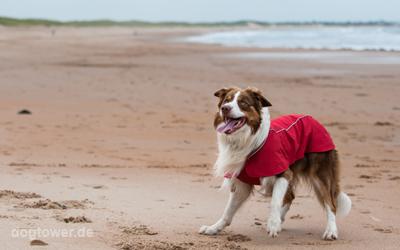 Auch ideal am Strand bei kühlem Wetter nutzbar