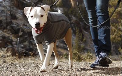 Hundejacke Climate Changer unterwegs
