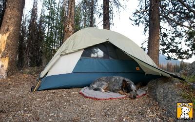 Ruffwear Hundeschlafplatz