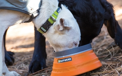 Ruffwear Hundehalsband Hoopie Collar, Aspen