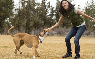 Action- Hundespielzeug Huckama