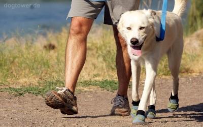 Robuste Hundeschuhe mit Klettverschluß