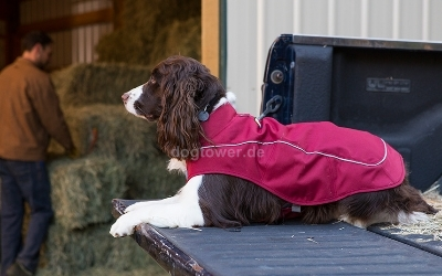 Ruffwear K9-Overcoat Utility Jacket, Cinder Cone Red