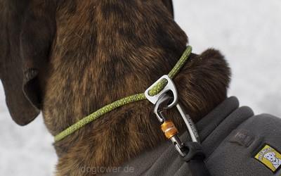 Knot a Collar in birke