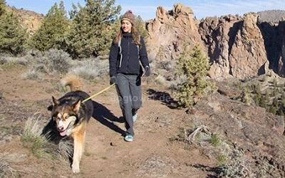 Für den Hundesport oder täglichen Spaziergang
