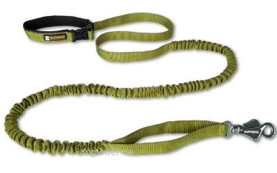 Ruffwear Roamer Leash Hundeleine, grün