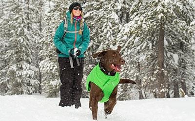 Winterjacke Ruffwear Quinzee, grün