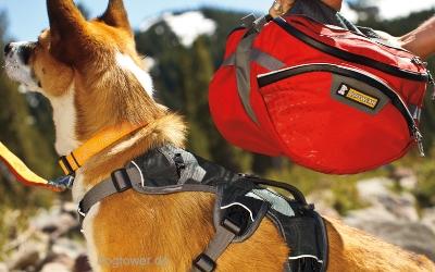 Hunderucksack im Einsatz