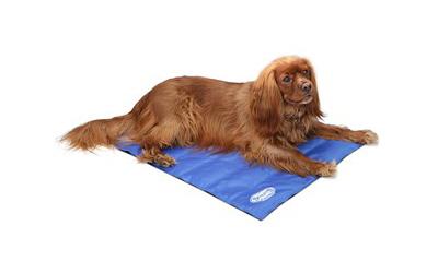 Scruffs Kühl-Hundematte Cooling, blau