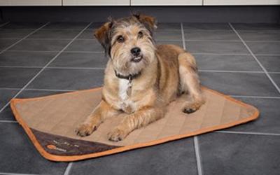 Scruffs Thermal selbstwärmende Hundematte, braun